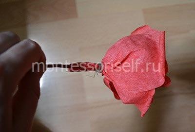 Цветок розы с лепестками