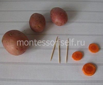 Картошка, морковка и зубочистки