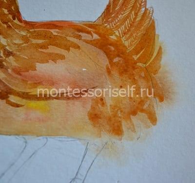 Раскрашиваем легкими мазками спинку и крылья