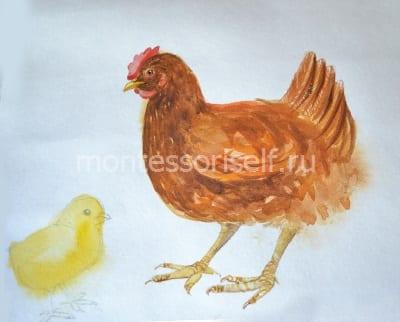 Немного размываем контур цыпленка