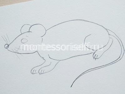 Рисуем мышку карандашом