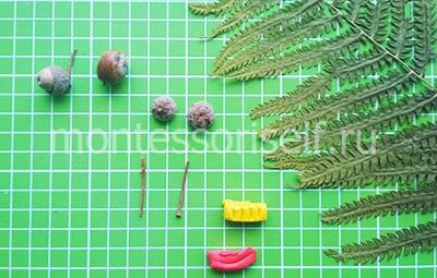 Желуди с веточками, сухоцвет, пластилин