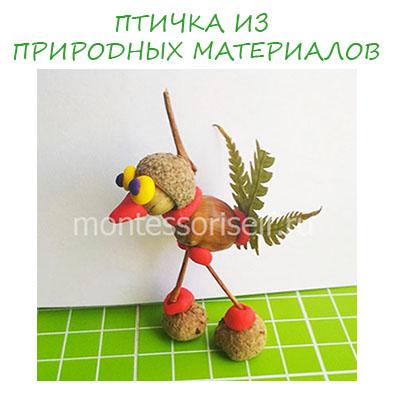 Птичка из природных материалов: поделка для детского сада или школы