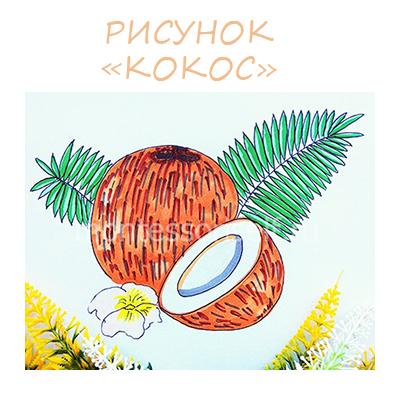 Как нарисовать кокос: мастер-класс с пошаговым фото